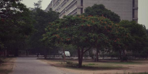 Chandigarh 15