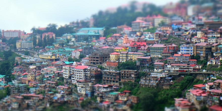 Shimla - copertina