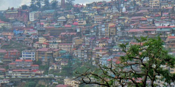 Shimla-02-1200×800