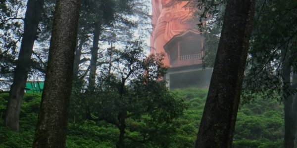 Shimla-15-800_1200