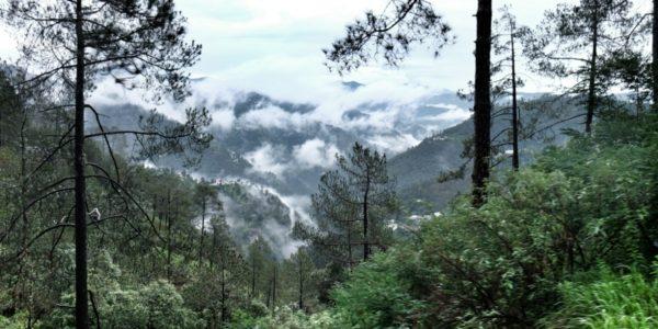 Shimla-treno06-1200_800