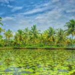 Kerala-13