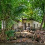 Kerala-15