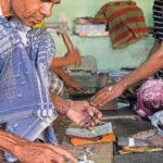 Hyderabad-48-Vark-foglia-argento