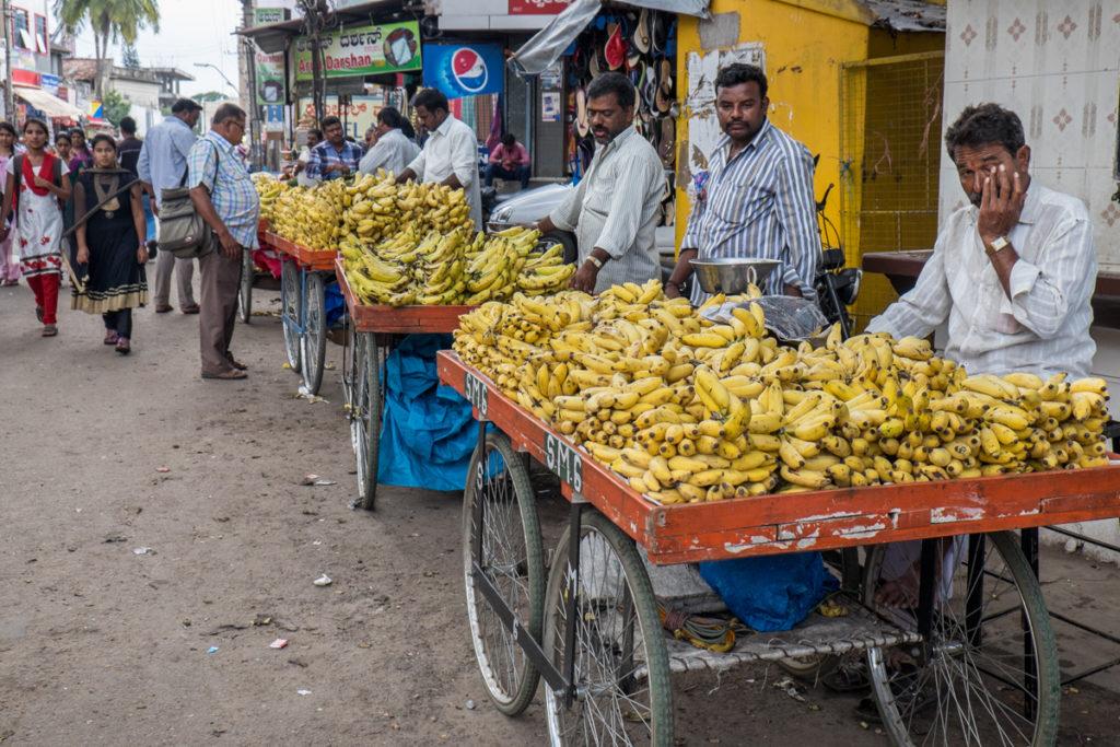 Mysore (1)