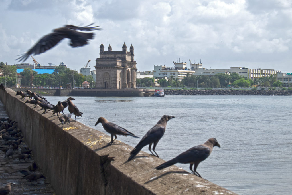 Gateway of India 02 Mumbai