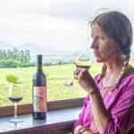 Nasik Vineyards 1
