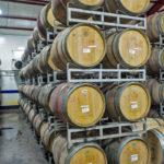 Nasik Vineyards 5