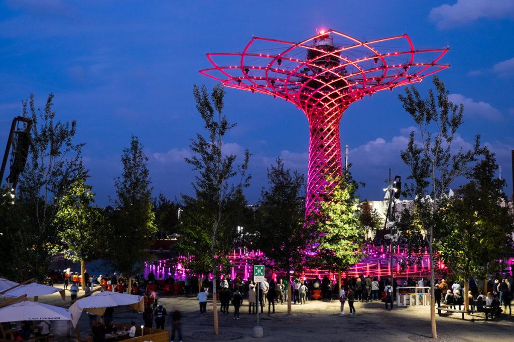 Tree of life Expo Mi 2015 n2