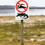 St Lucia e False Bay not swim