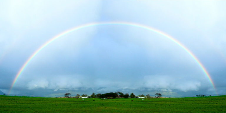Stellenbosch-copertina