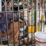 Battambang Market (8)