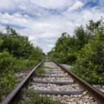 Battambang bamboo train (3)