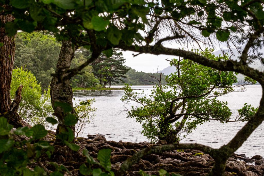 Loch Maree - Achnasheen